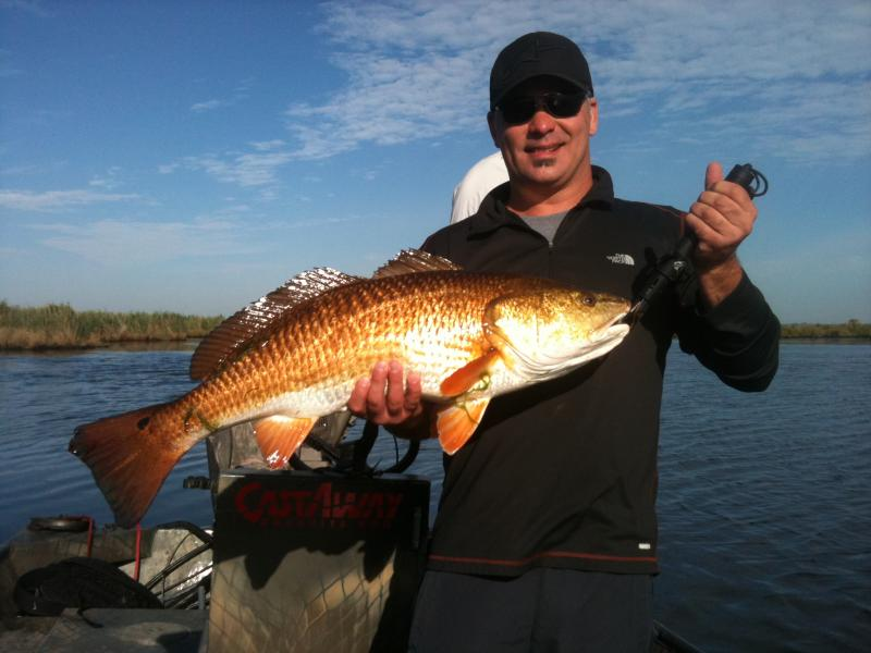 Related keywords suggestions for louisiana redfish for Louisiana saltwater fishing license